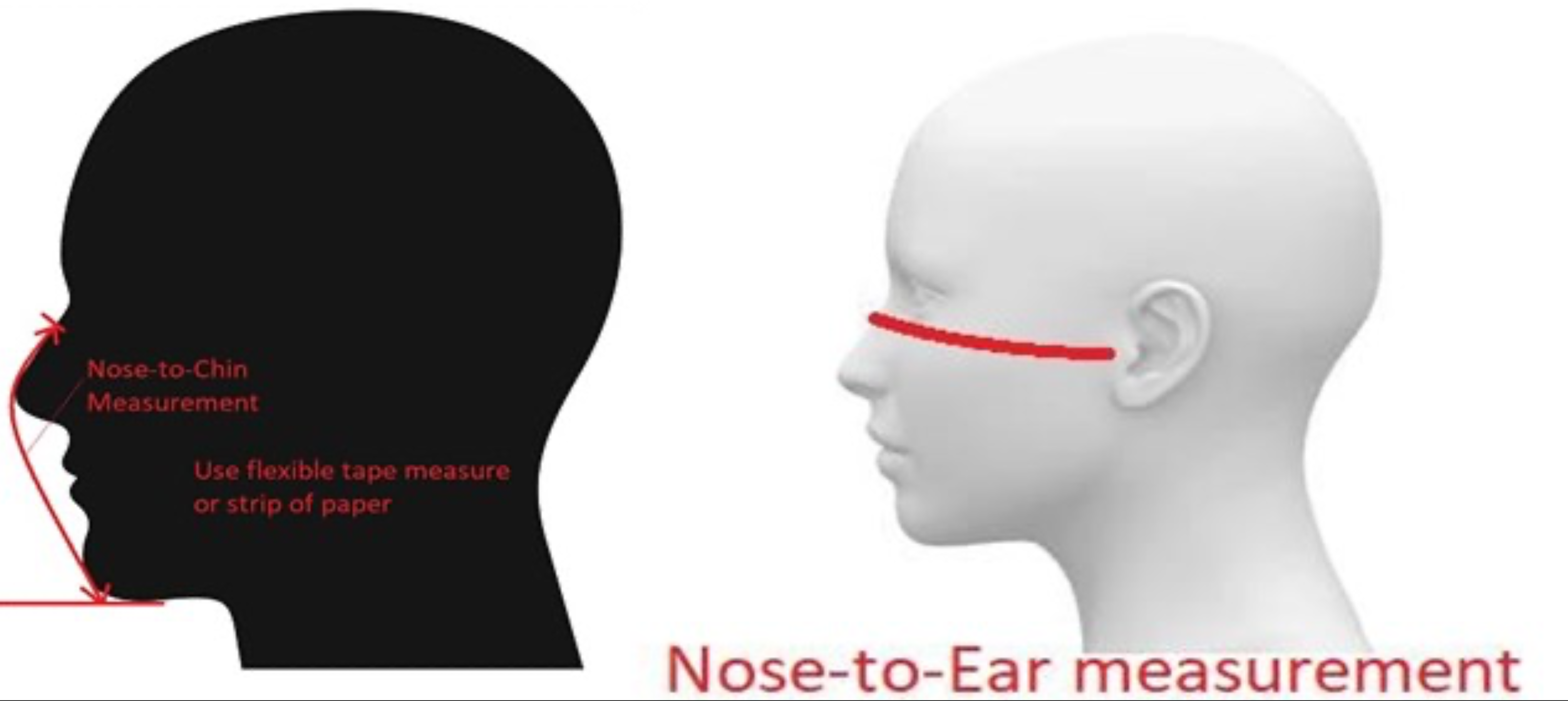 nose to ear measurement